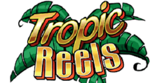 tropic reels slots game online with great payouts
