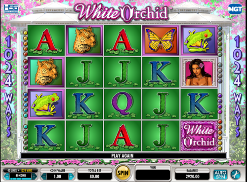 Free white orchid slot game by IGT