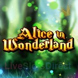 Alice Adventure Slot - Try the Online Game for Free Now