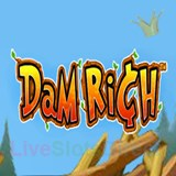 Dam Rich by Cryptologic