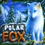Polar Fox by Novomatic