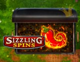 Sizzling Spins by PlaynGO